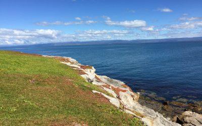 Picnic Island – the backstory